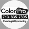 Colorpro Painting