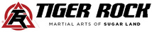 Tiger Rock Martial Arts of Sugar Land
