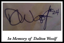 In Memory of Dalton Woolf